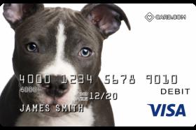 Pitbull Design CARD.com Prepaid Visa
