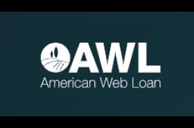 American Web Loan Personal Loans
