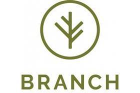 Branch Auto Insurance