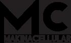 LIA MABEL ELECTRONICS CORP.