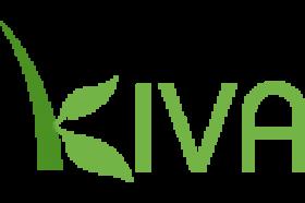 Kiva Business Loans